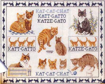 Кошки-котики-котята.